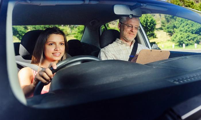Professional Driving Instructors